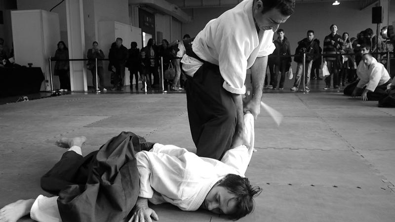 Aikido as a martial art